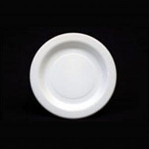Plastic Bread & Butter Plate (25)